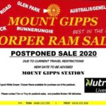 Mt Gipps Ram Sale Postponed